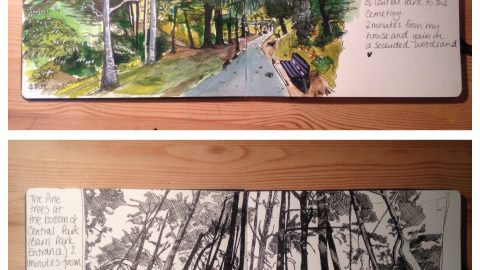 GUEST ARTIST: Visiting Parks In Plymouth