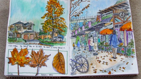 GUEST DOODLEWASH: Sketching From Life