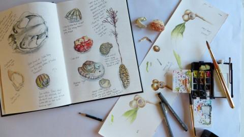 GUEST DOODLEWASH: Travel Sketching