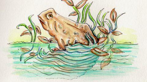 APRIL ADVENTURE: Doodlewash A Day & Happy April Fools' Day!