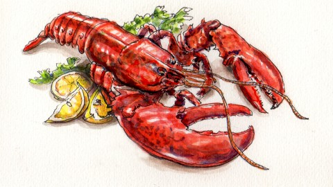 Lobster – A Food Even Lobsters Love To Eat