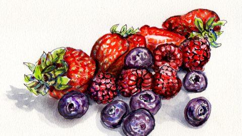 Berries On The Brain