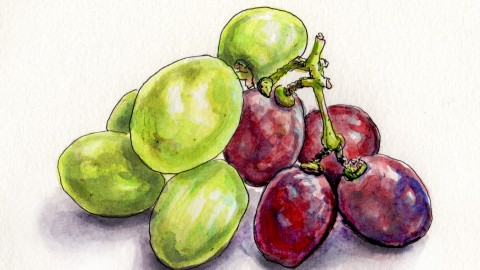 Grapes For National Wine Day