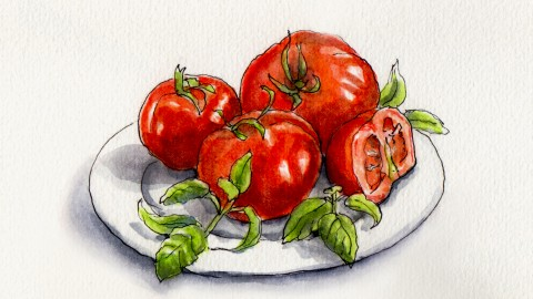 Tomatoes & Basil – A Match Made in Heaven