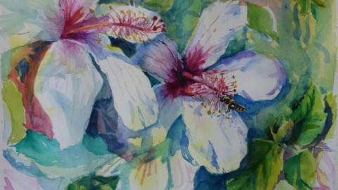 GUEST DOODLEWASH: Watercolors by Celia Blanco