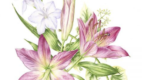 GUEST ARTIST: Achieving your own Botanical so Beautiful with Sketchbook Squirrel
