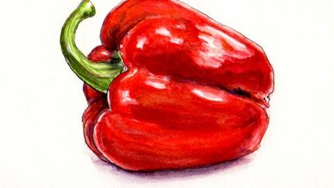 Celebrate The Pepper