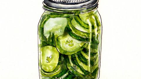 Pickle Day