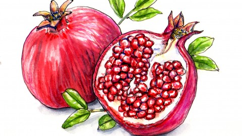 Happy Pomegranate Month!