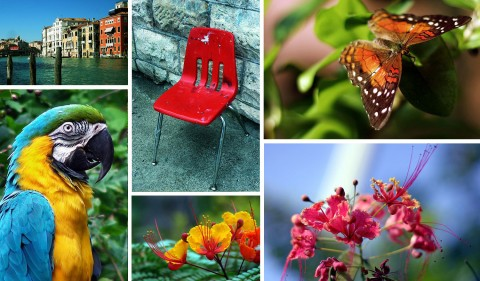 SPECIAL FEATURE: Over 600 Free Reference Photos For Artists And Writers