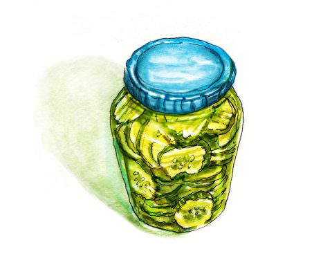World Watercolor Month – Day 16 – A Big Jar Of Pickles