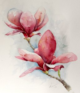 Magnolia – Original Watercolor