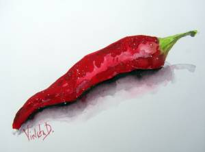 Chili – Original Watercolor